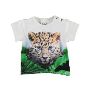 Molo(モロ) Emilio Jungle Cub ショートスリーブTee(~size92)|sugardays