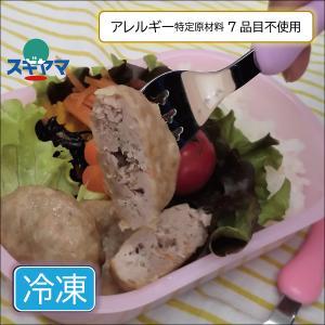 ポーク ハンバーグ 小 4個|sugiyamagokisoal