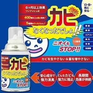カビなくなったでしょ! 200ml  除菌 消臭 防カビ 抗菌エアソール ウィルス除去 掃除 カビ予...
