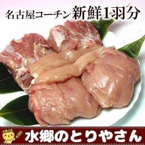 名古屋コーチン 新鮮 もも肉2枚 胸肉2枚 ささみ2本 ギフト|suigodori