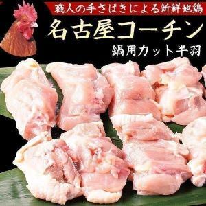 名古屋コーチン コーチン 鍋用カット 鶏肉 地鶏 もも肉  むね肉 ささみ|suigodori