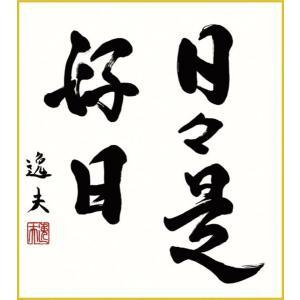 色紙 三幸 趣1号 日々是好日 K11-030 逸夫  色紙のみ 154791098|suiho