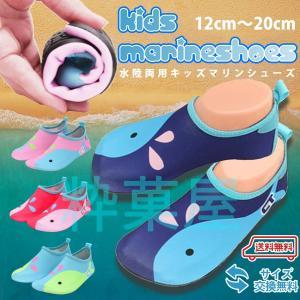水陸両用 キッズ マリンシューズ 上履きにも 丸めてコンパクト 安心の無料サイズ交換|suikaya9001