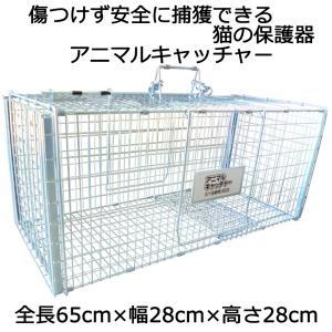 丸十金網 猫の保護器 猫を傷つけず安全に捕獲できる アニマルキャッチャー