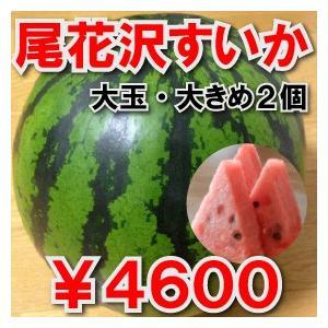 スイカ農家から直送!尾花沢すいか/大玉/大きめ2個セット...