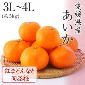 (12月上旬より発送) 愛媛県産 あいか お歳暮 ギフト みかん 3L〜4L 約5kg 紅まどんなと同品種 化粧箱入り 送料無料|suikinkarou