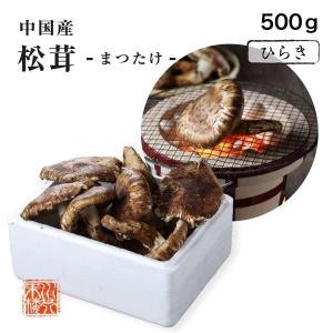 送料無料 まつたけ 松茸 中国産 訳あり 家庭用 ひらき 約500g|suikinkarou