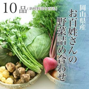 【送料無料】朝採れ 岡山県産 お百姓さんの厳選野菜詰め合わせ 10品 新鮮野菜を直送野菜セット 野菜詰め合わせ 新鮮野菜 旬の野菜 季節の野菜 やさい 詰め合わせ|suikinkarou