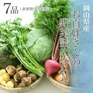 【送料無料】朝採れ 岡山県産 お百姓さんの厳選野菜詰め合わせ 7品 新鮮野菜を直送野菜セット 野菜詰め合わせ 新鮮野菜 旬の野菜 季節の野菜 やさい 詰め合わせ|suikinkarou