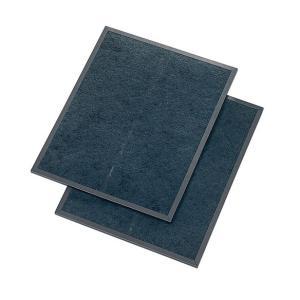 スモークダッシュ用特殊活性炭フィルター BP-200DF |suisainet