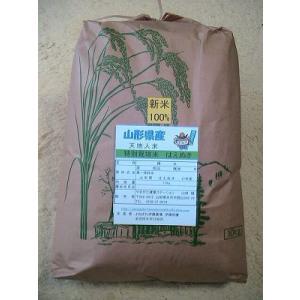 山形県産はえぬき 特別栽培米 白米10k|suisainet