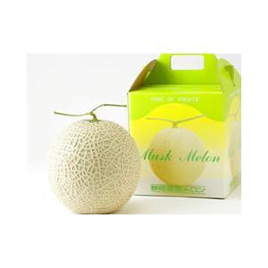 静岡県産 温室マスクメロン 2個箱|suisainet