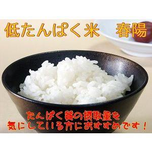宮城県産 低たんぱく米 『春陽』 白米10k|suisainet