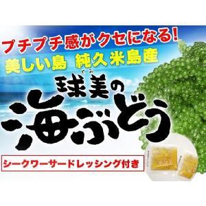 沖縄 純久米島産  球美の海ぶどう 200g|suisainet