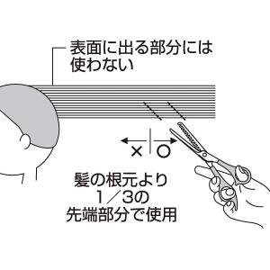 貝印 サンパツセット カット&スキハサミ&クシのセット キャップ付き suityuugekka
