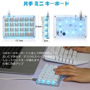 フルプログラム可能 メカニカルキーボード カスタマイズ可能 ゲーミングキーボード 23キー マクロキー 青色バックライト 片手小型キーボード|suityuugekka