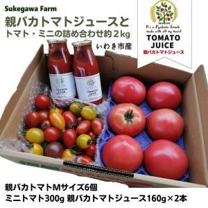 [予約]親バカトマト・ミニトマト・トマトジュースの詰合わせ 約2kg いわき市産 11月下旬〜発送|suketoma