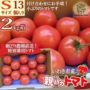 [予約]親バカトマト 約2kg Sサイズ 13個入り いわき市産 11月下旬〜発送|suketoma