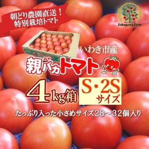 [予約]親バカトマト 約4kg S 2Sサイズ 28個〜32個入り いわき市産 11月下旬〜発送|suketoma