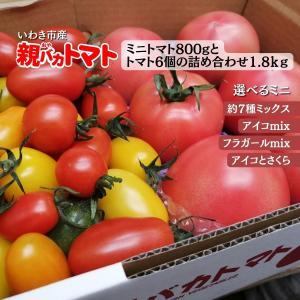 [予約]親バカトマト6個とミニトマト900gの詰め合わせ 約2kg いわき市産 選べるミニ 11月下旬〜発送|suketoma