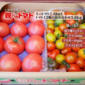 [予約]親バカトマトとミニトマトの詰め合わせ 約4kg いわき市産 選べるミニ 11月下旬〜発送|suketoma