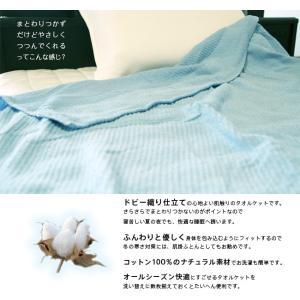 天然素材コットン100%ドビー織コットンタオルケット シングルサイズ CGDTK-14190|sukusuku|02