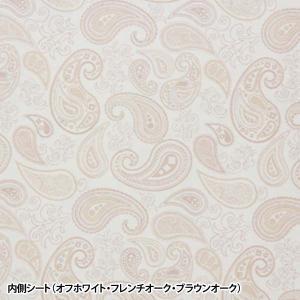 デザインカラーボックス DCX-2 アイリスオーヤマ キューブボックス キューブBOX|sukusuku|05
