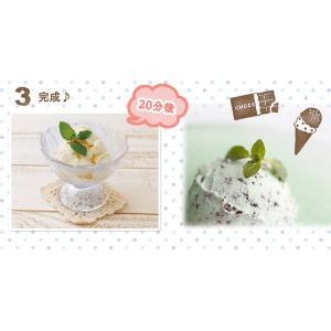 アイスクリームメーカー ICM01-VM・ICM01-VS アイリスオーヤマ アイス 手作り アイス シャーベット ジェラート 氷菓子 簡単 親子 家庭用|sukusuku|05