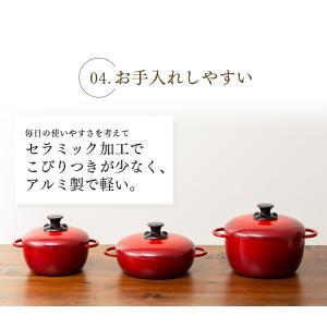 (在庫処分)鍋 無加水鍋 おしゃれ デザイン無加水鍋 GMKS-24D アイリスオーヤマ|sukusuku|17