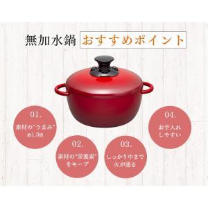 (在庫処分)鍋 無加水鍋 おしゃれ デザイン無加水鍋 GMKS-24D アイリスオーヤマ|sukusuku|09