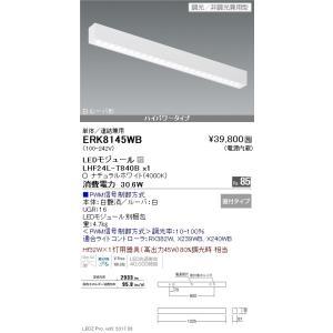 遠藤照明 ベースライト LEDモジュール付 ナチュラルホワイト ERK8145WB|sumai-diy