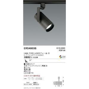 遠藤照明 スポットライト  LEDモジュール付 非調光タイプ ERS4803BA sumai-diy