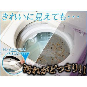 洗濯槽キレイサッパリ 200g(1回分使い切りタイプ)|sumairu-com|02