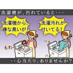 洗濯槽キレイサッパリ 200g(1回分使い切りタイプ)|sumairu-com|03