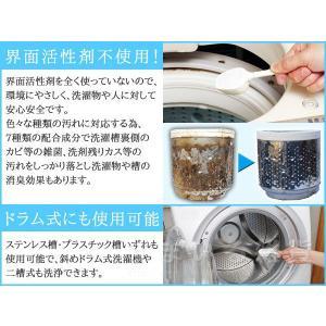 洗濯槽キレイサッパリ 200g(1回分使い切りタイプ)|sumairu-com|05