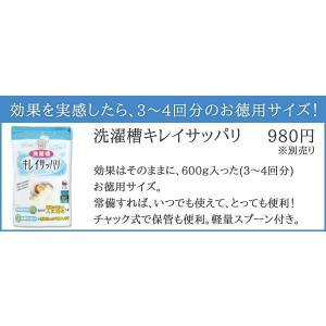 洗濯槽キレイサッパリ 200g(1回分使い切りタイプ)|sumairu-com|06