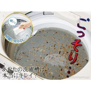 洗濯槽キレイサッパリ 50g小分けパック12個入り|sumairu-com|02