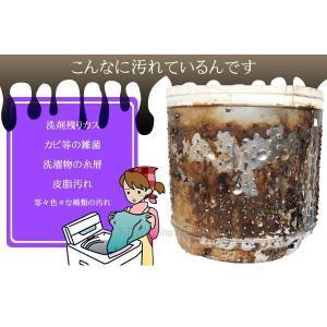 洗濯槽キレイサッパリ 50g小分けパック12個入り|sumairu-com|03
