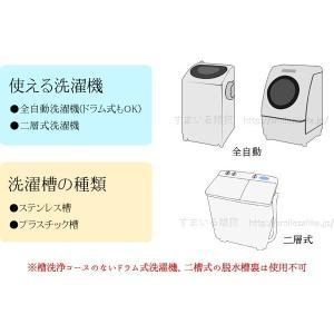 洗濯槽キレイサッパリ 50g小分けパック12個入り|sumairu-com|06