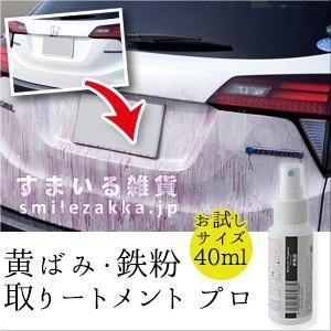 黄ばみ・鉄粉取りートメント プロ 40ml 黄ばみ取り 鉄粉取り|sumairu-com