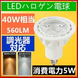 (Aタイプ)調光器対応 LED スポットライト E11 口金 e11 LED ハロゲン電球 5W  電球色/昼光色