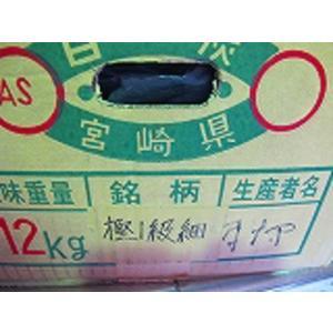 日向備長炭 1級細(細丸) 12kg sumi-kurasishop