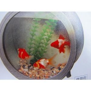 金魚陶器鉢、全面ガラス、陶水槽丸大、信楽|sumi-kurasishop