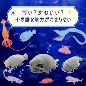 すみだ水族館 リアルダイオウグソクムシ ぬいぐるみ Lサイズ|sumida-aquarium|02