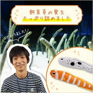 すみだ水族館 オリジナル 飼育員監修 ニシキアナゴ ぬいぐるみ |sumida-aquarium|02