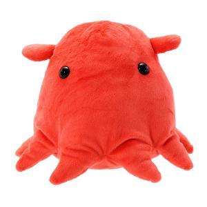 すみだ水族館 メンダコ ぬいぐるみ Mサイズ 深海生物|sumida-aquarium