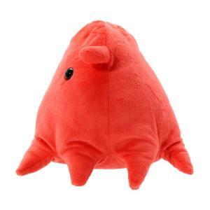 すみだ水族館 メンダコ ぬいぐるみ Mサイズ 深海生物|sumida-aquarium|02
