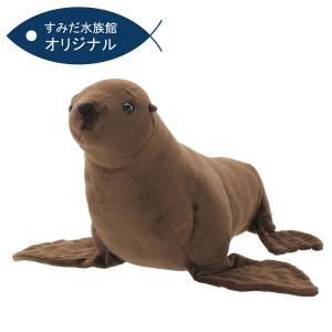すみだ水族館 オリジナル ミナミアメリカオットセイ ぬいぐるみ Mサイズ|sumida-aquarium