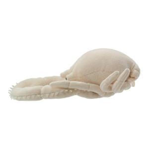 すみだ水族館 ゴエモンコシオリエビ ぬいぐるみ 深海生物|sumida-aquarium|03