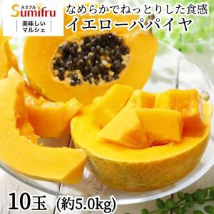 送料無料 フィリピン産パパイヤ 10玉 約5キロ 酵素・ビタミンCもたっぷりトロピカルフルーツの代表格